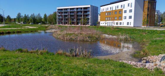 Papinpellon hulevesikosteikon laadullisen hallinnan parantaminen Rauman kaupunkialueella